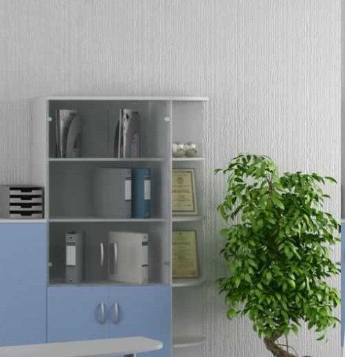 Растения в вашем офисе