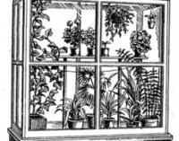 Балконная тепличка
