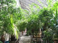 Ботанический сад Львовского национального университета